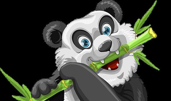 panda-1454345_640-1-1.png